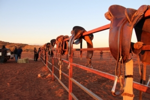 Horseyards at sunset